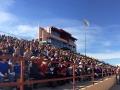 POB 2014 Crowd
